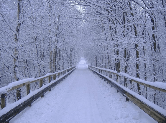 أتبحثين عن مواقع لقضاء الشتاء؟ إليك أفضلها...