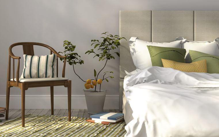 5 نصائح ذهبية من ميدي نافاني: أدوات بسيطة لتحوّلي منزلك إلى واحة استرخاء!