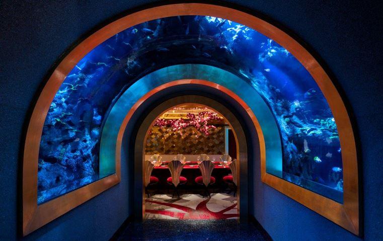 5 مطاعم في دبي ستخرج بك عن كل ما هو مألوف!