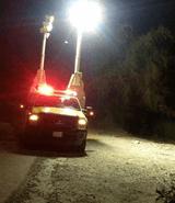 بالفيديو: نمر يفاجئ عائلة سعودية على الطريق!